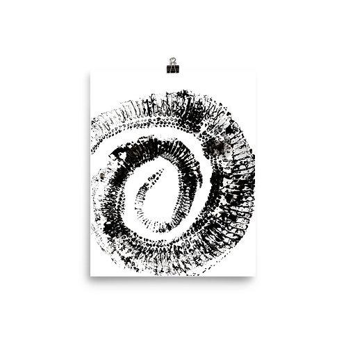 Poster - Diamondback Rattlesnake (IA13V2)