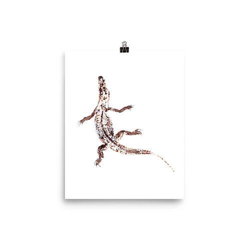 Poster - American Alligator (IA65V3)