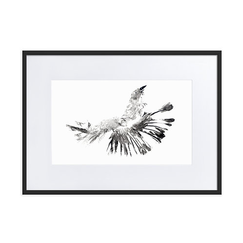 Matte Paper Framed Poster With Mat - House Sparrow (IA62V1)