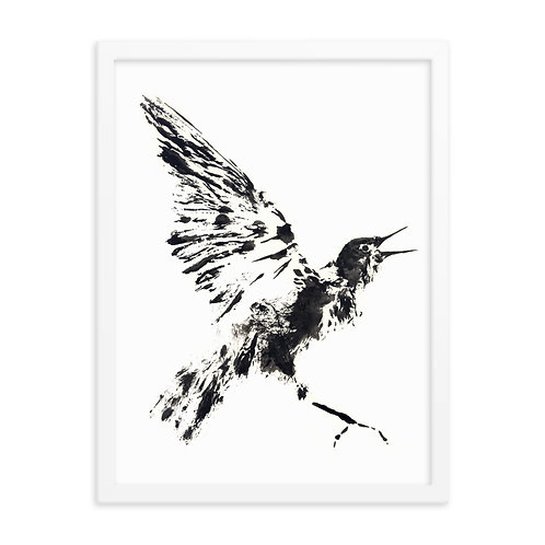 Framed photo paper poster - European Starling (IA11V1)