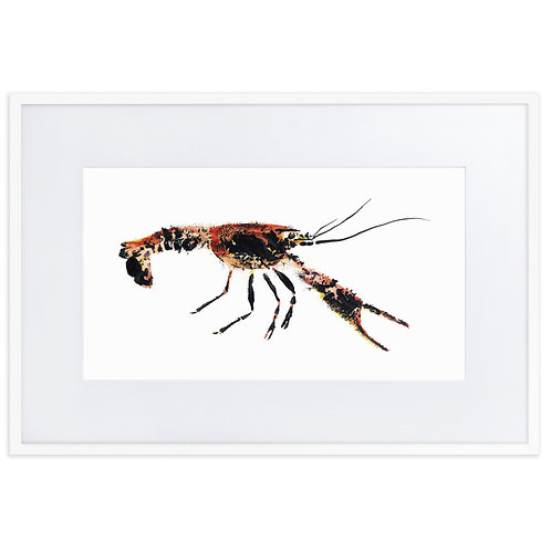Matte Paper Framed Poster With Mat - Red Swamp Crayfish (IA96V2)