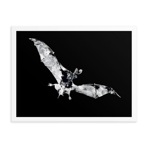 Framed photo paper poster - Mexican Free-tailed Bat (IA55V1_inverted)