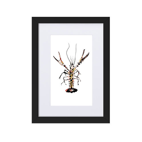 Matte Paper Framed Poster With Mat - Red Swamp Crayfish (IA96V3)