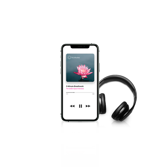 audioguide edit.png