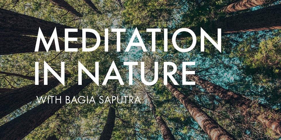 FREE MEDITATION: Meditation in Nature