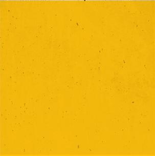 yellow bg_4x.png