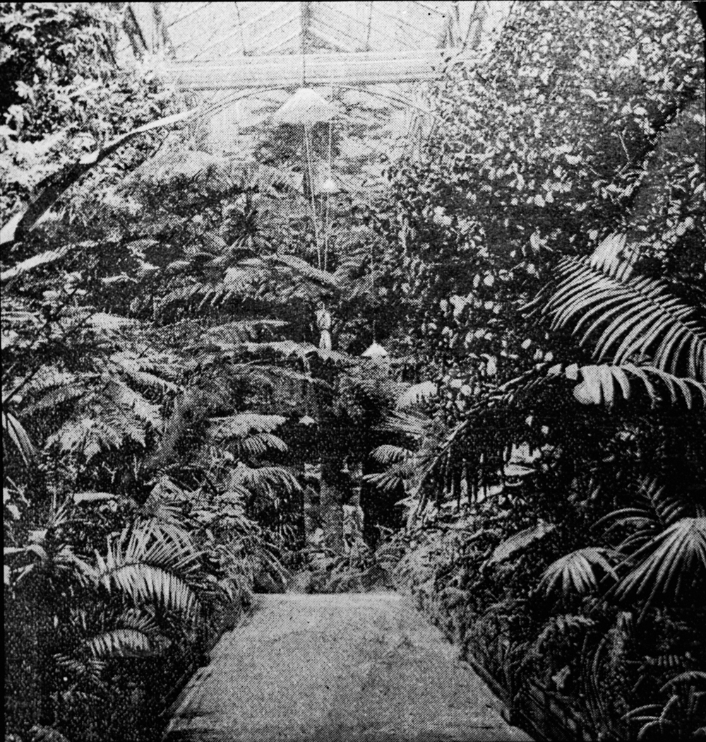 206_The Conservatory- Oakworth House