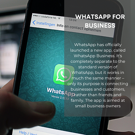 My Panoramic-Whatsapp for Business.png