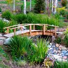 Arched bridge over seasonal creek.