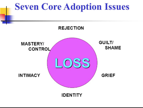 7 Core Issues in Adoption