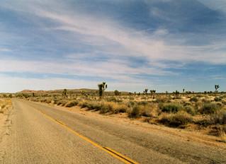 FULL BLEED: DOWN IN THE DESERT