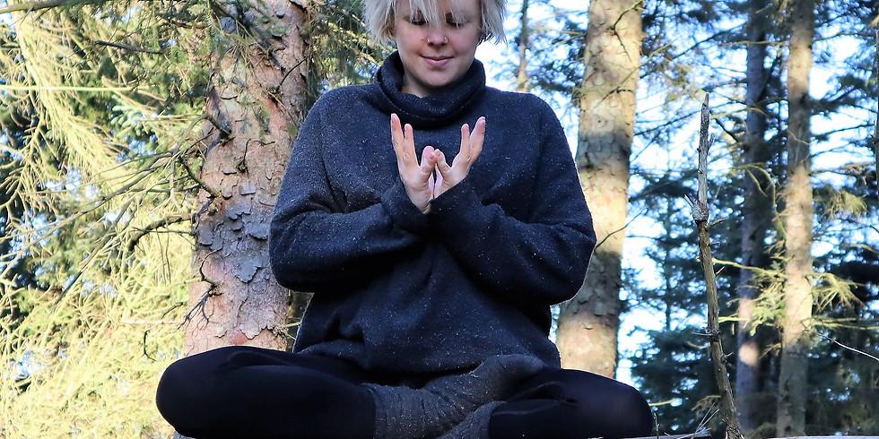 Yoga Filosofi for den moderne udøver: Yamas og Niyamas.