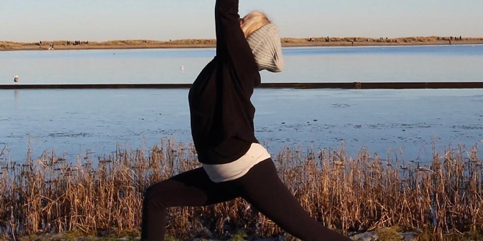 Hatha Yoga hos Hennested 24/10