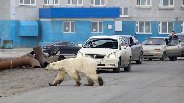 Norilsk, Siberia.jpg