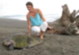 Olive Ridley Turtle Arribada in Costa Rica