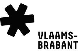 logo vl br.jpg