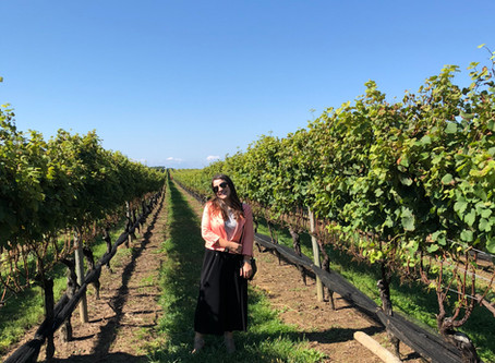 Plan a Day Trip Wine Tour from NYC