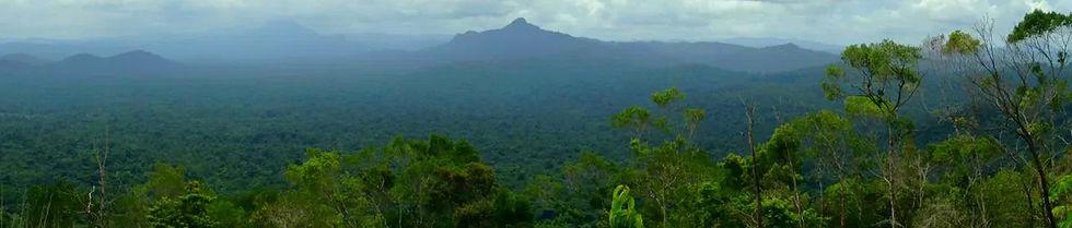 Belize Jaguar Reserve | Koool Rental Services