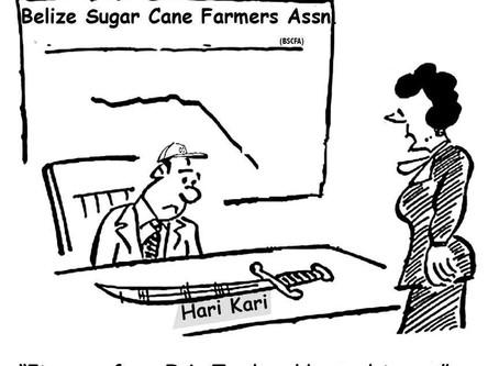 A Question On Sugar