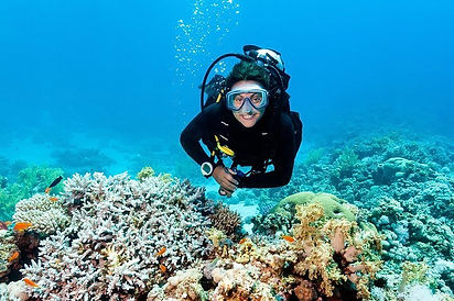 Private 2 Tank Barrier Reef Scuba Divng