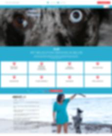 Pet Service Website Design