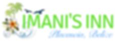 pro logo design service in Belize