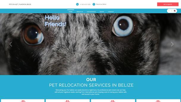 Pets On A Jet Website Project