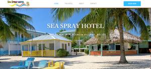 website redesign services in Belize