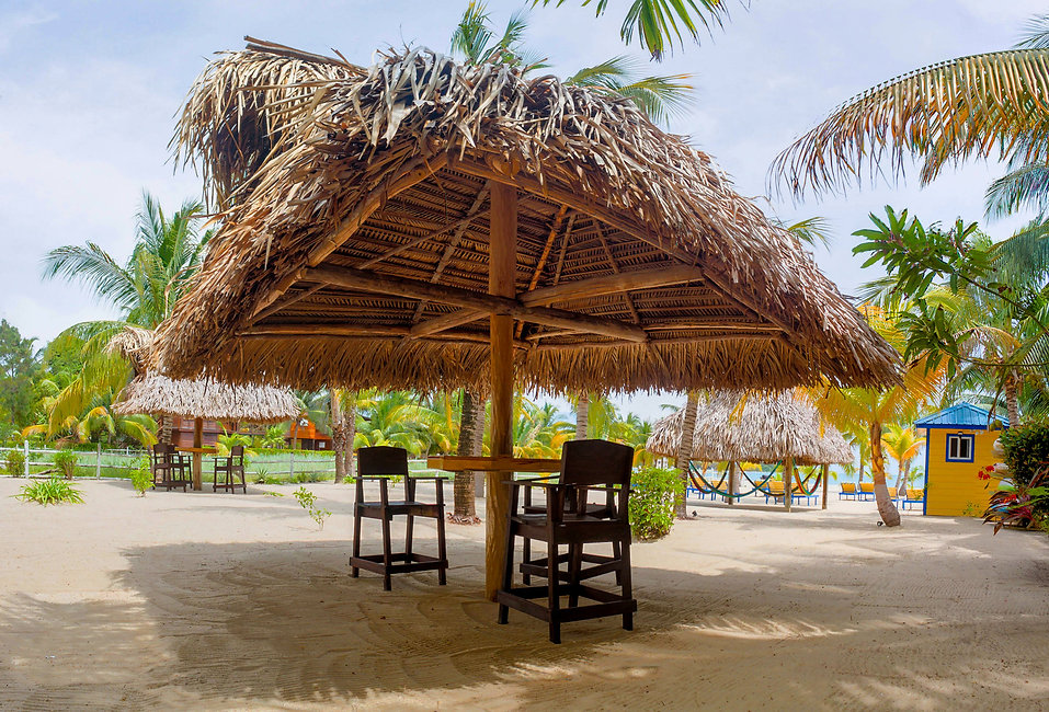 beachside thatch  palapa