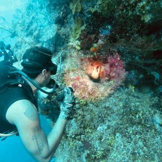Placencia Scuba Diver