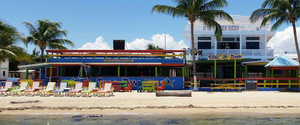 affordable restaurant to eat in Placencia