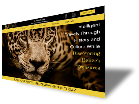 RECENT PROJECT: Website Re-Design For Belize Unknown