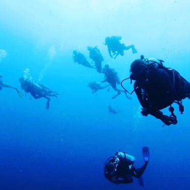 Scuba Divers Placencia