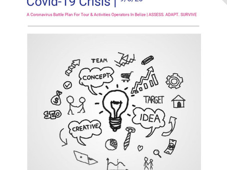 Marketing Through The Covid-19 Crisis: A Coronavirus Battle Plan For Tour Operators In Belize (PDF)