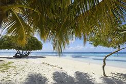 Moho Caye beach