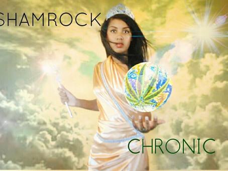 Shamrock: Disruptive Innovator