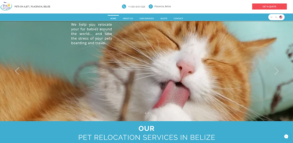 pet transfer services in Belize