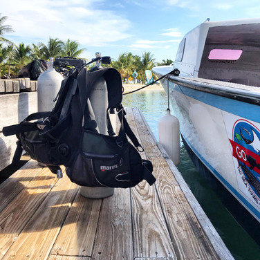 Scuba Dive Belize