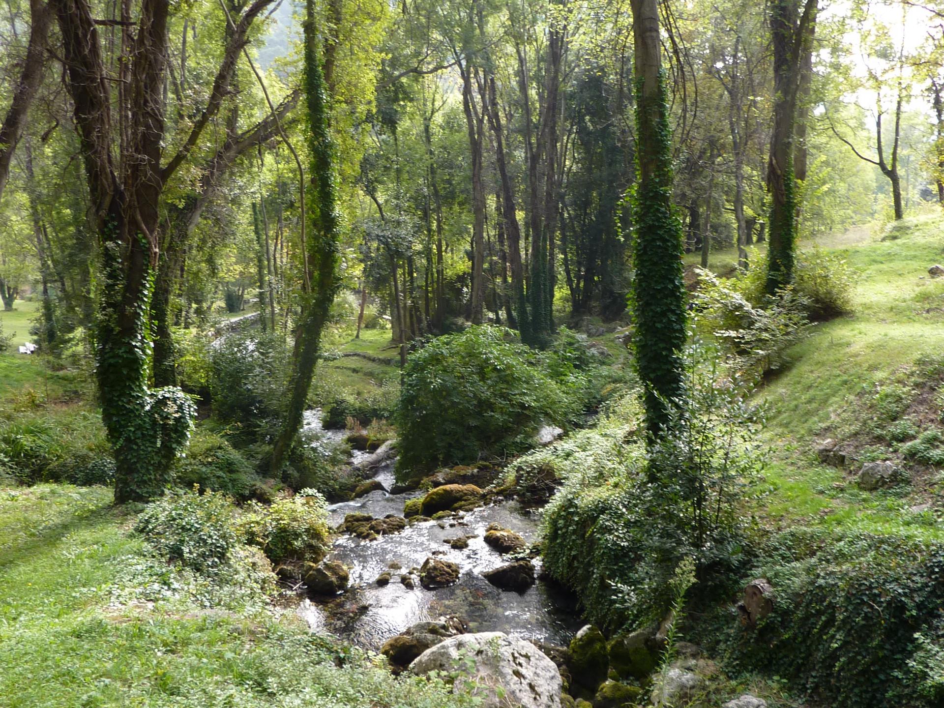 Source de la Siagne, St Cézaire