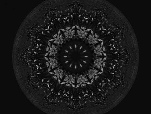 Nightshift Records Behaving Badder