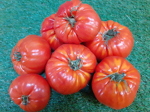 Tomate Rebellion, les 500g