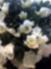 les-halles-fleuries_fleuriste-villeboisl