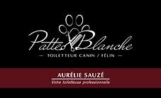 la-chaine-graphique-gie_PatteBlanche_car