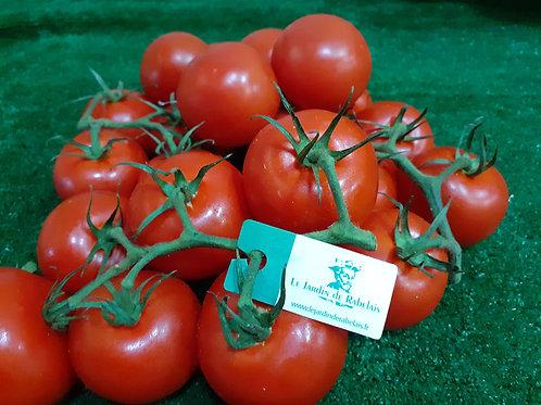 Tomate Grappe Rabelais, les 500g
