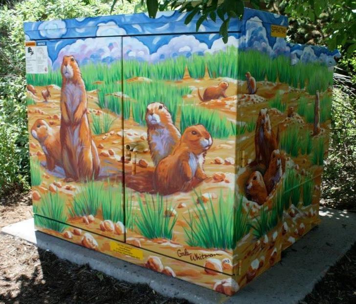 2013 PrairieDogs
