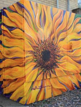 2010 Sunflower