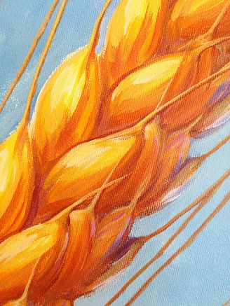 High Plains Gold painting of wheat head