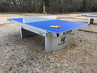 Ferny Crofts Table Tennis