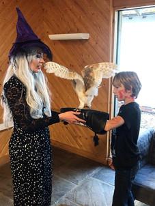 Creature Teachers - Barn Owl