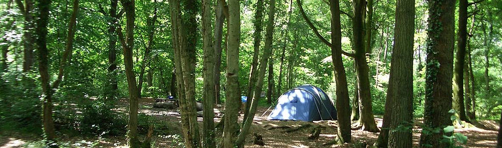Ferny Crofts Wooded Campsite